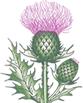 claneil logo